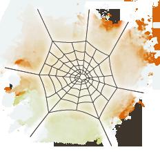 Spindelns nät